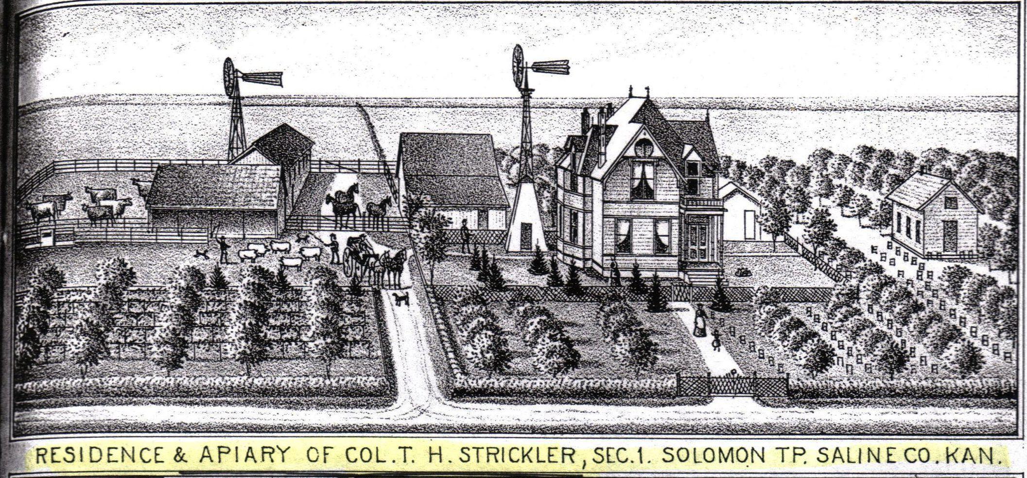 Kansas dickinson county solomon - Strickler Farm Solomon Ks
